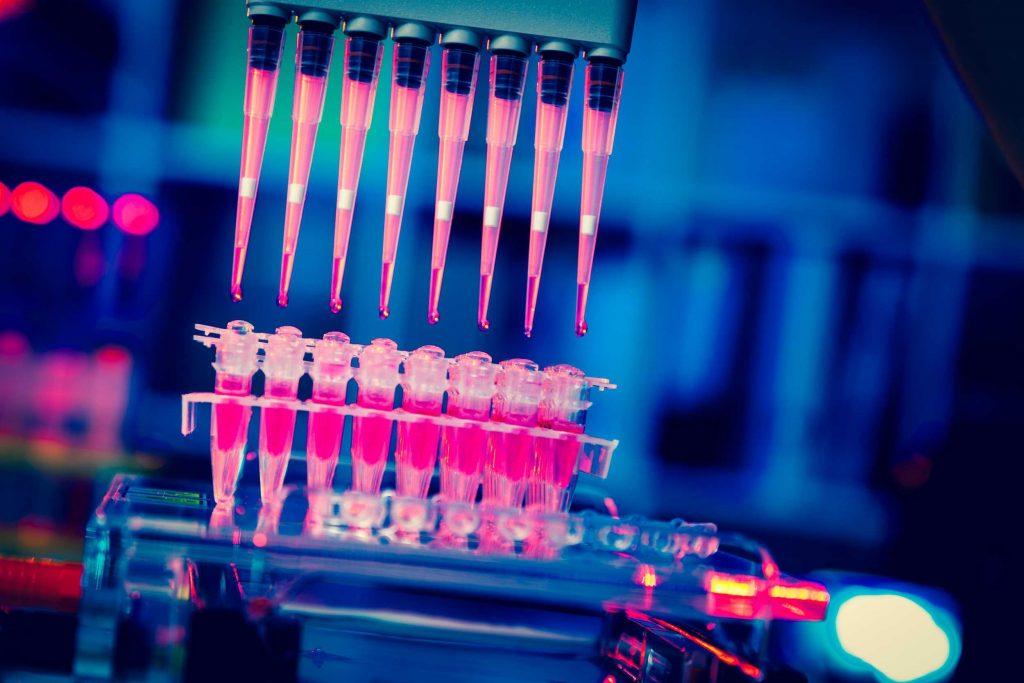 Selecta Biosciences SELB Stock